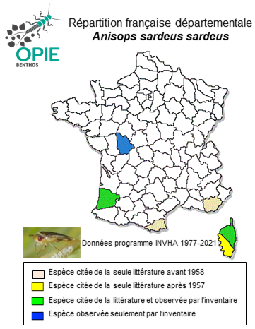Opie Benthos